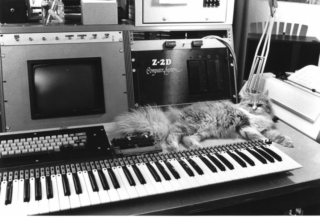 Keyboard interface with cat