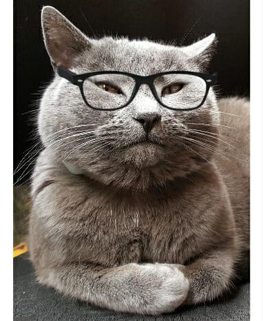 izzy-glasses